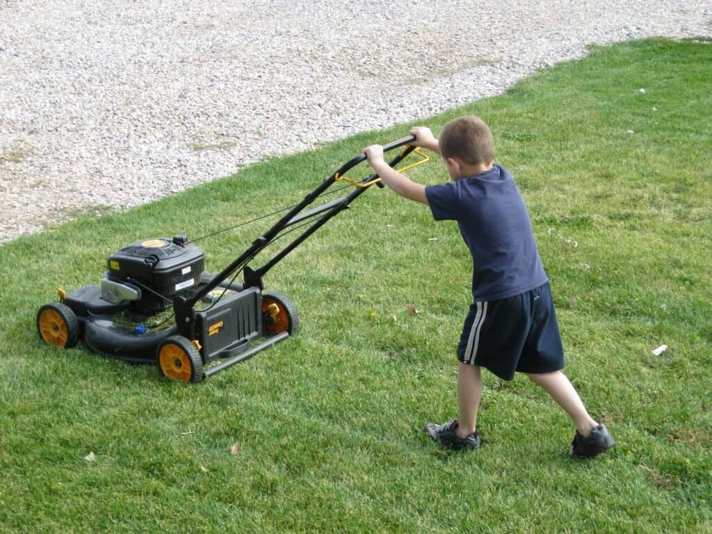 The Best Push Mower Reviews For 2018