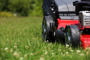 mowing your lawn in season