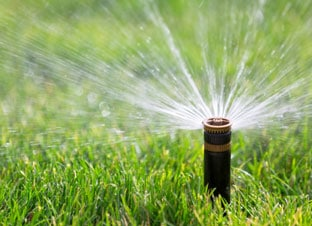 tips fertilizing your lawn