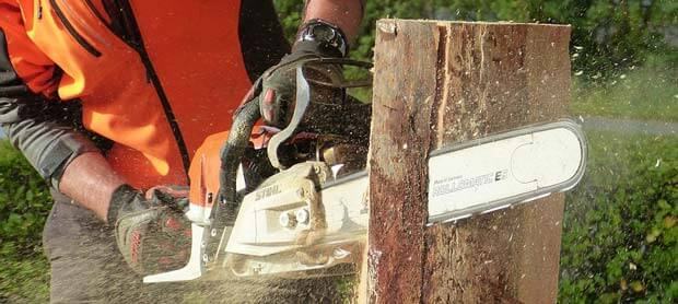 Chainsaw Buyers Guide