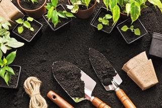 Having Good Soil