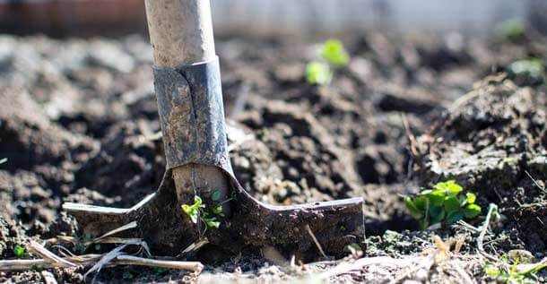Soil Preparations