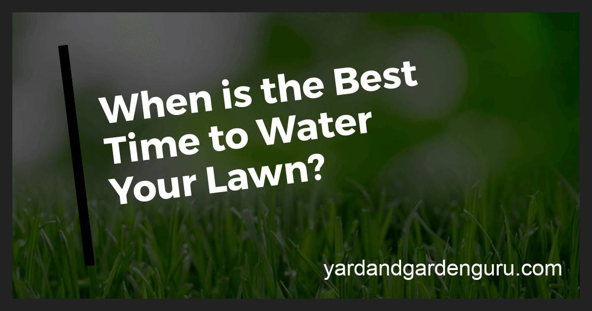 How Long Should I Water The Lawn Lawn Watering Schedule