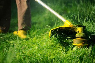String trimmers buying tips