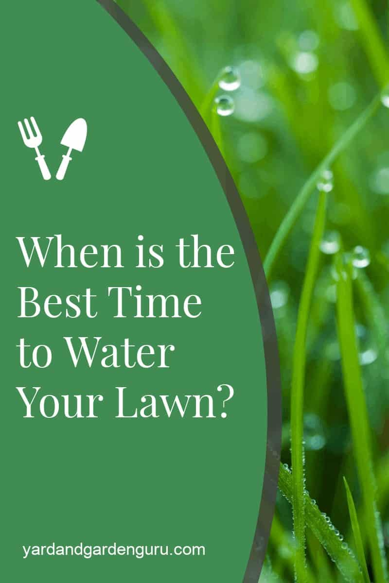 When is the Best Time to Water Your Lawn