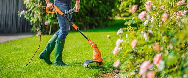 best weed trimmer for your needs