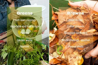 items to compost