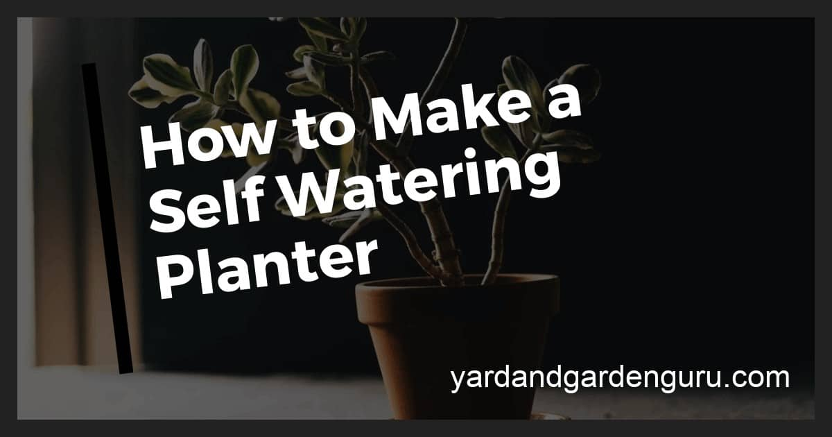 How Do Self Watering Pots Work Self Watering Containers