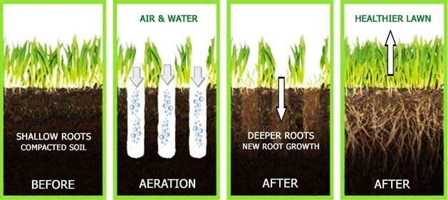 Perlite soil and soil Aeration