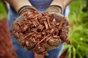 mulch for water retention