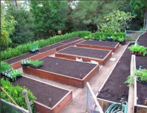 raised beds advantage