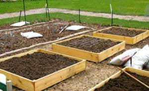 raised beds how to build