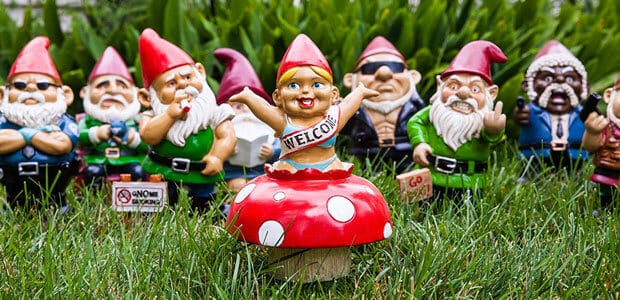 types gnomes for your garden