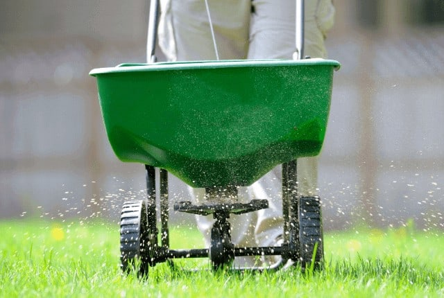 What is the Best Time of Day to Fertilize Lawn