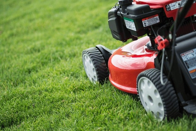 When is the Best Time of Day to Mow Your Lawn