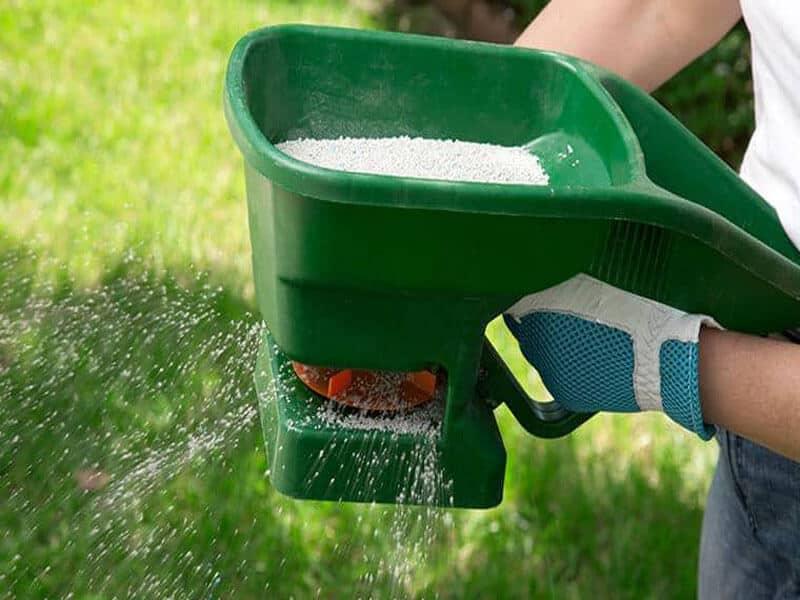 Tips in Lawn Fertilization