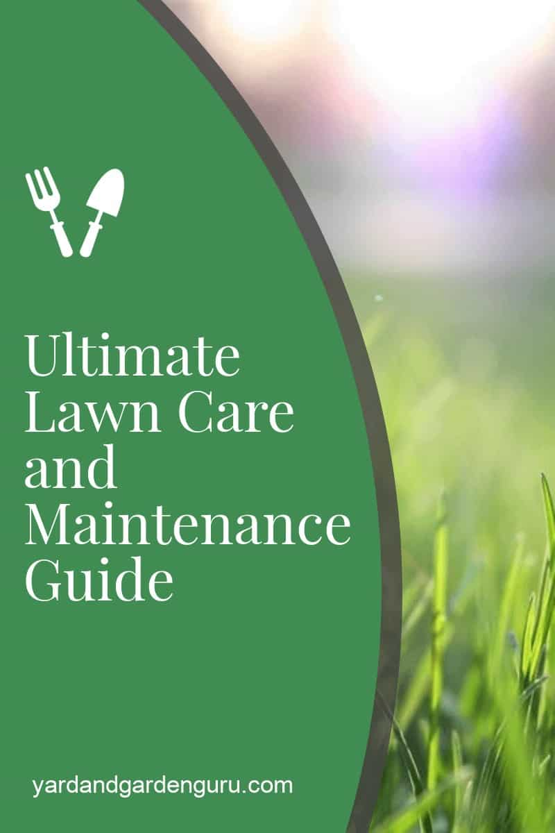Ultimate Lawn Care and Maintenance Guide