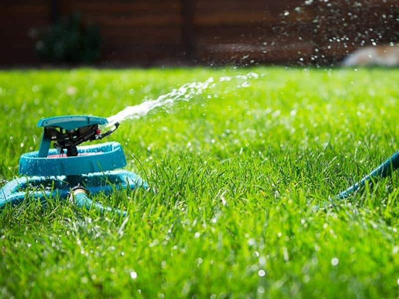 practical lawn watering tips
