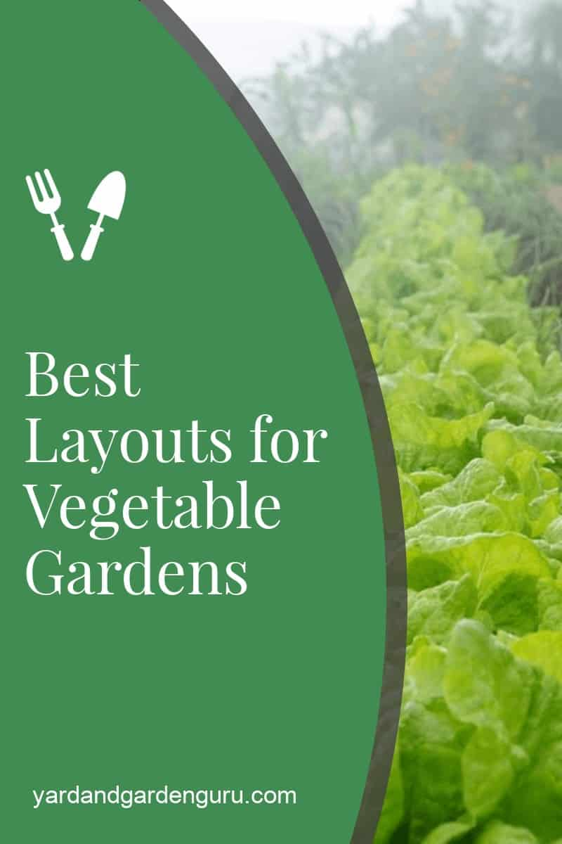 Best Layouts for Vegetable Gardens