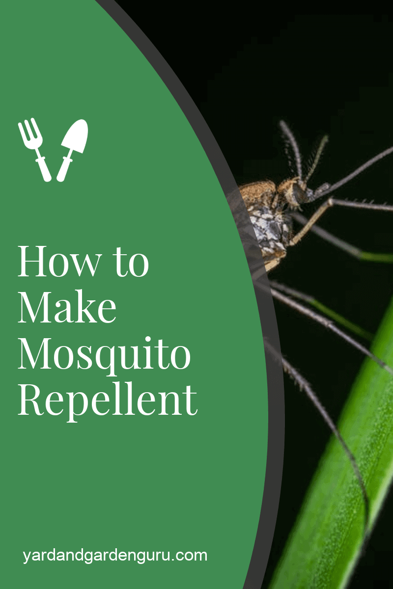 How to Make Mosquito Repellent