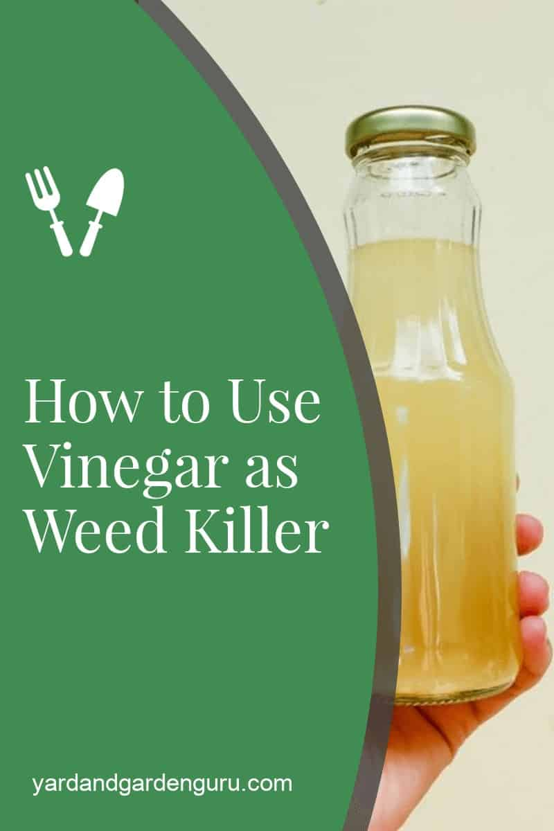 How to Use Vinegar as Weed Killer
