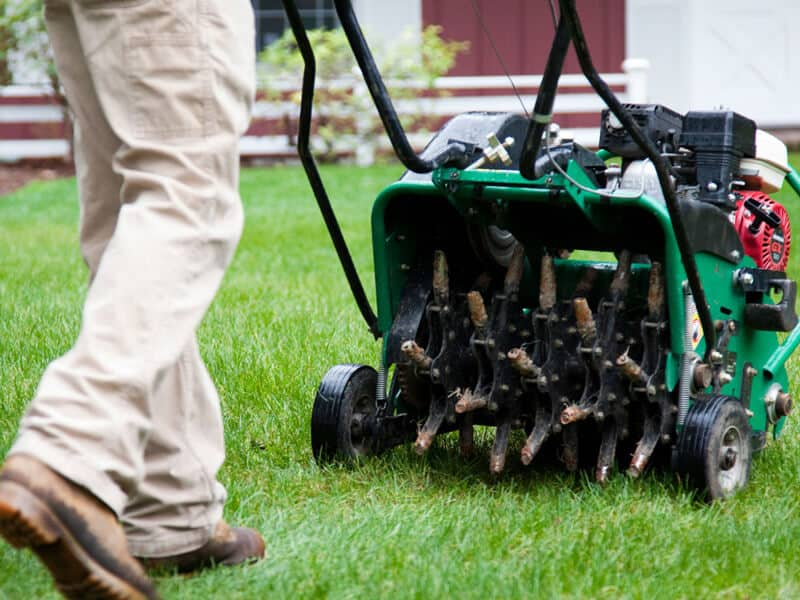 Ways to Aerate a Lawn