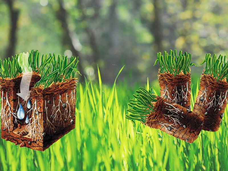 why lawns need aeration