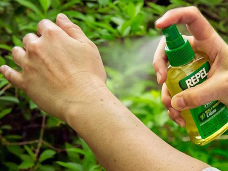 Effective Homemade Mosquito Repellent