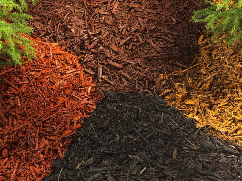 Types Mulches for Gardens
