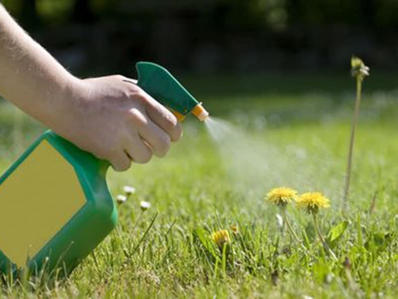 Weed Killer for your Garden