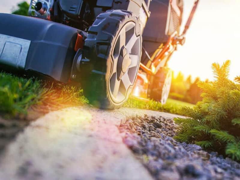 lawn mower bargain