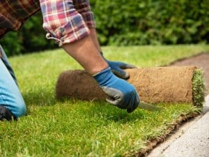 Best tips in installing Sod in your Lawn