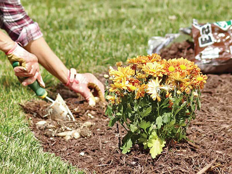 calculation of mulch for your garden