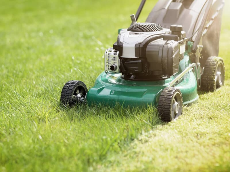 Guide on mowing your grass