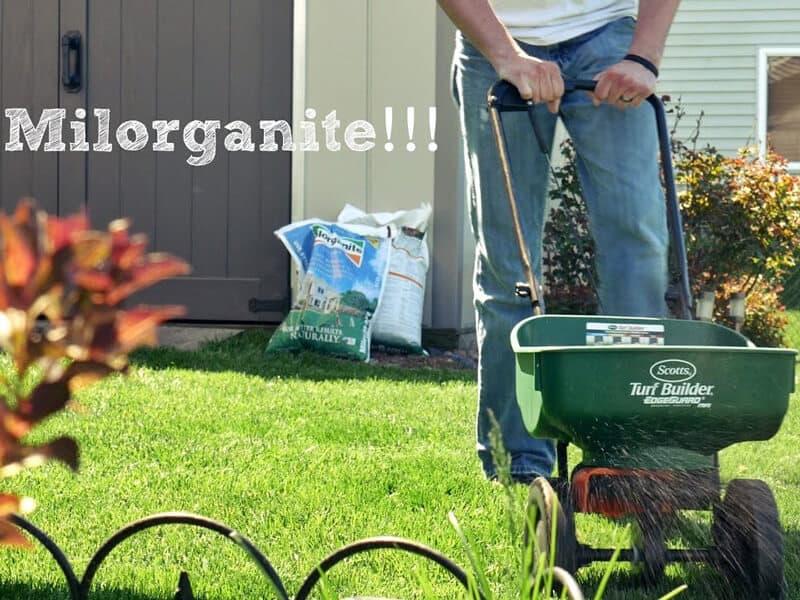 Milorganite for your lawn