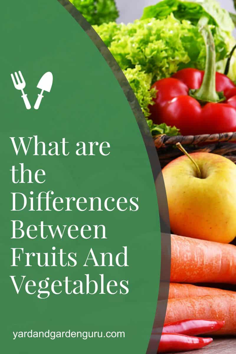 What are the Differences Between Fruits And Vegetables