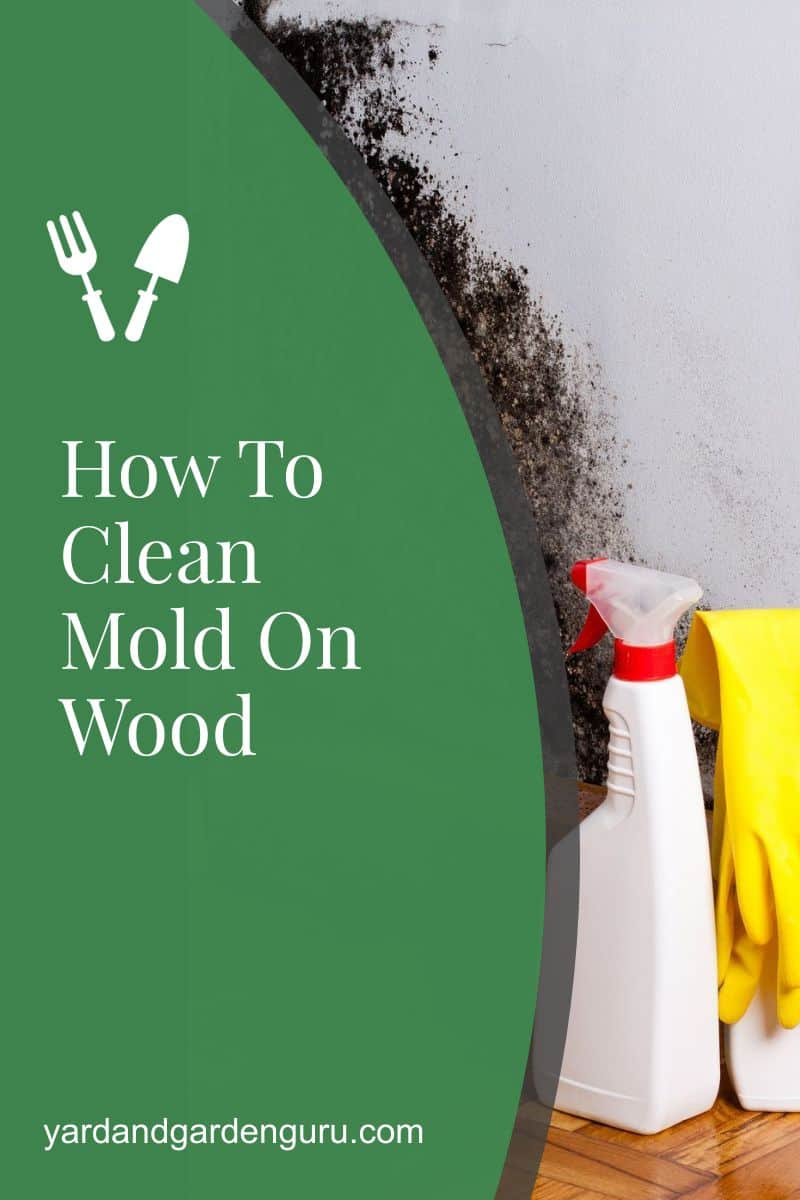 How To Clean Mold On Wood