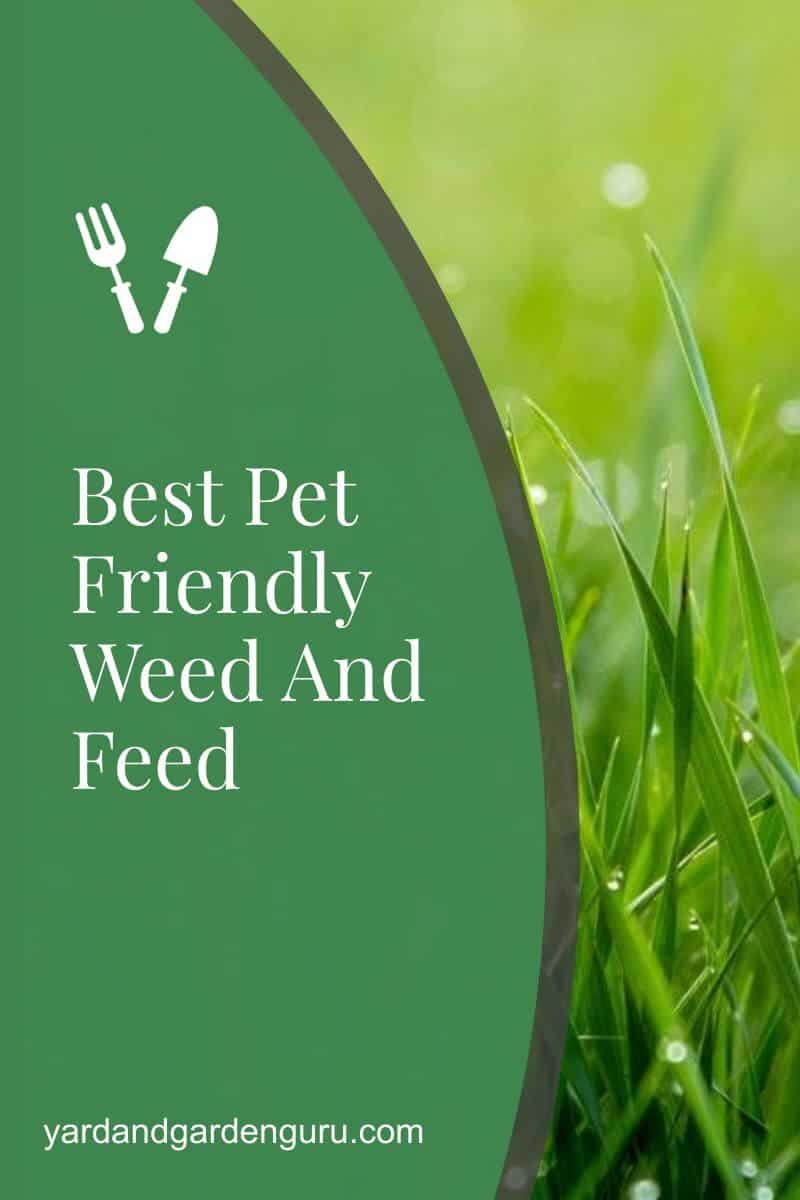 Best Pet Friendly Weed And Feed