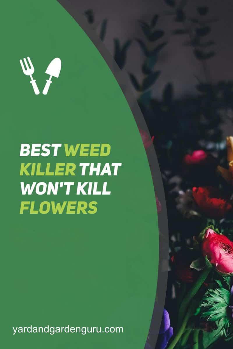 Best Weed Killer That Won't Kill Flowers