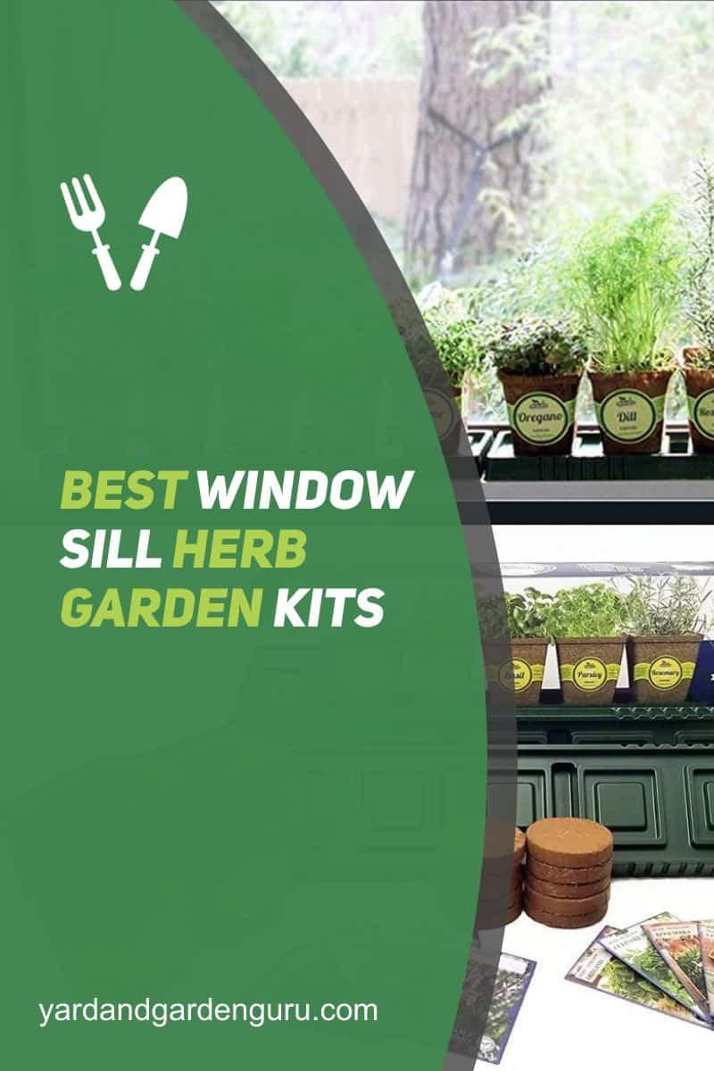 Best Window Sill Herb Garden Kits