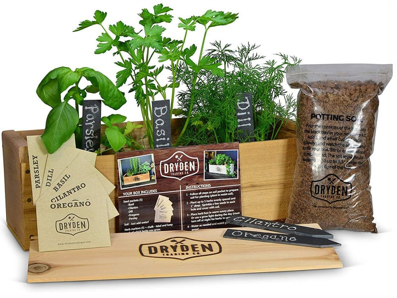 Window Sill Herb Garden Kits