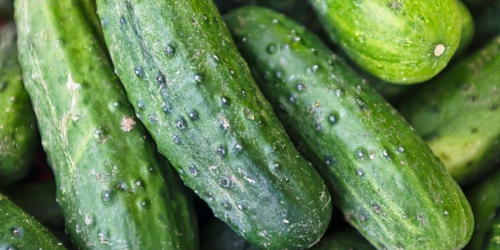 Do Cucumbers Need To Be Refrigerated