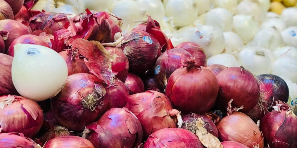 How To Store Onions From The Garden
