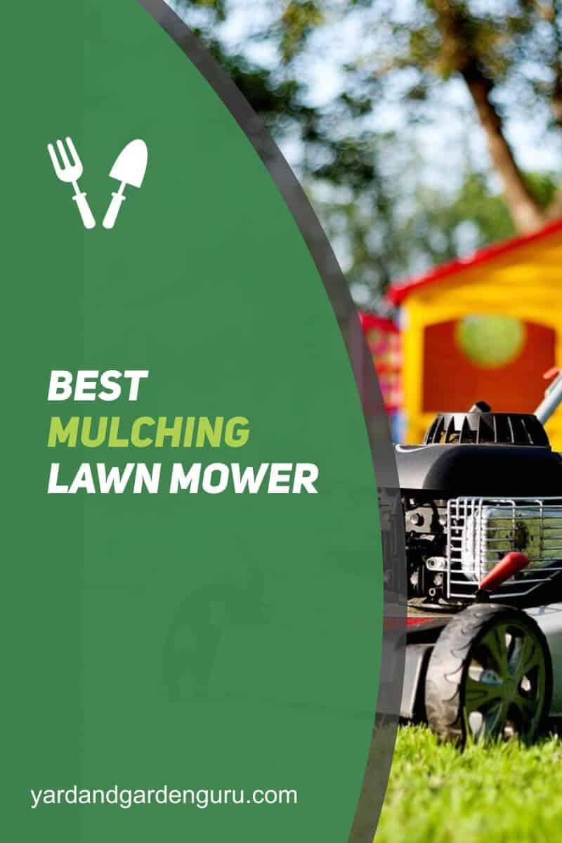 Best Mulching Lawn Mower (2)
