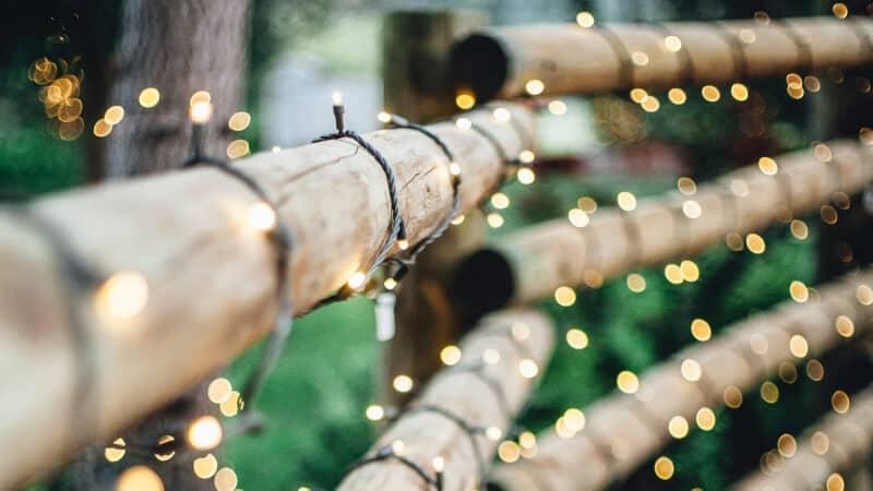 string light on bamboo