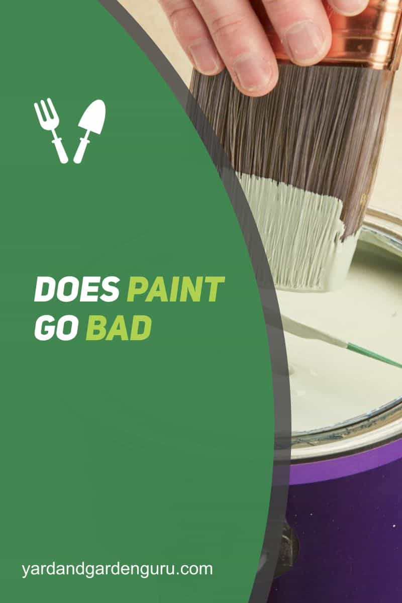 Does Paint Go Bad